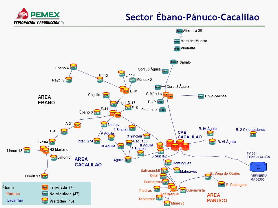 Sector Ébano-Pánuco-Cacalilao