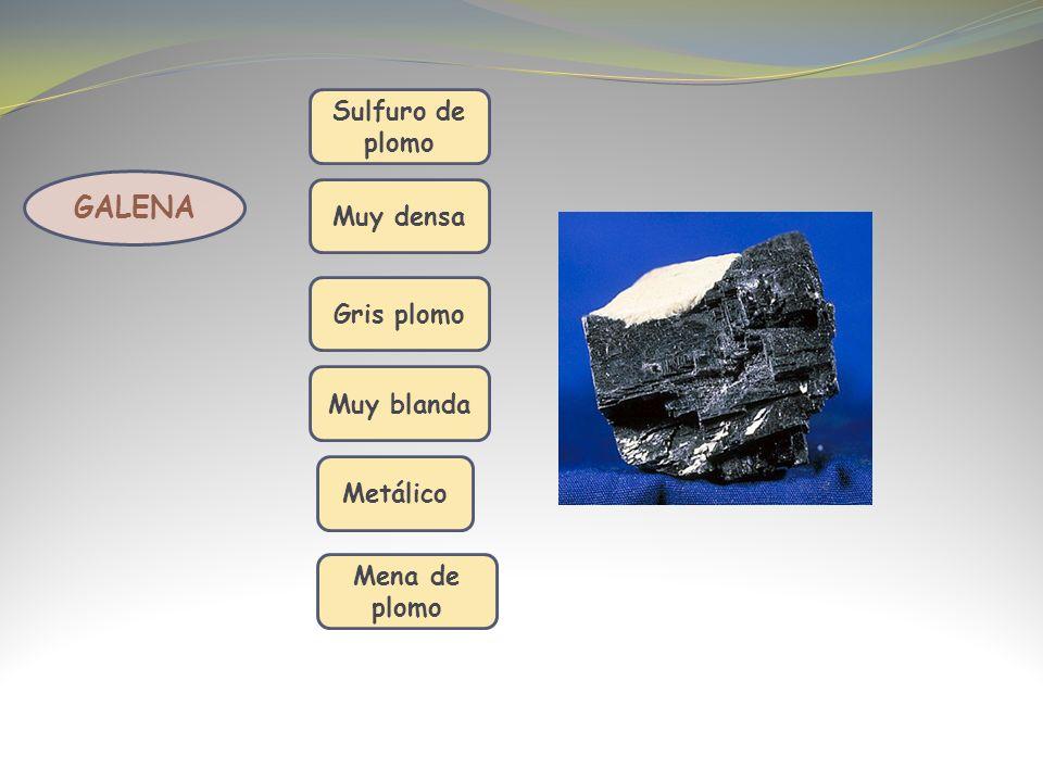 GALENA Sulfuro de plomo Muy densa Gris plomo Muy blanda Metálico