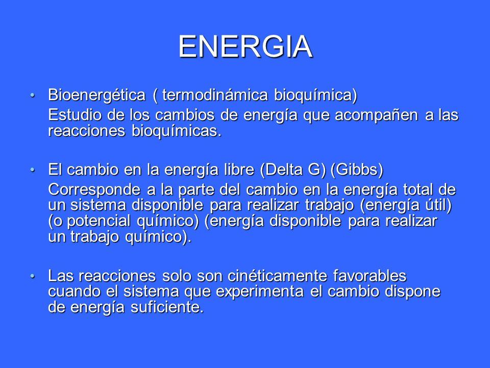ENERGIA Bioenergética ( termodinámica bioquímica)
