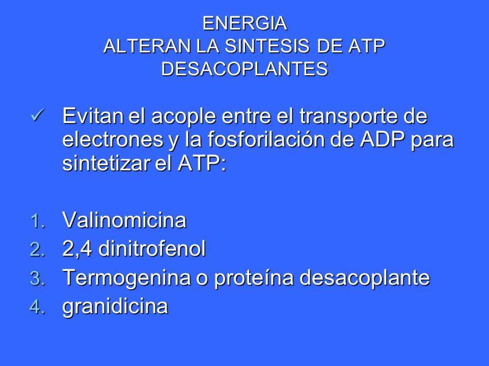 ENERGIA ALTERAN LA SINTESIS DE ATP DESACOPLANTES