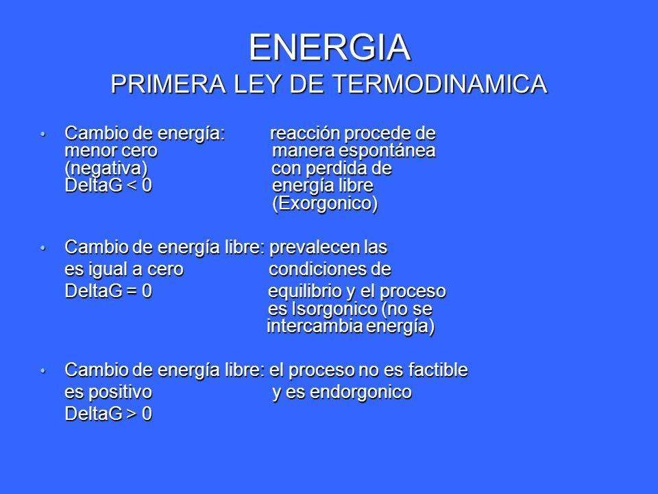 ENERGIA PRIMERA LEY DE TERMODINAMICA