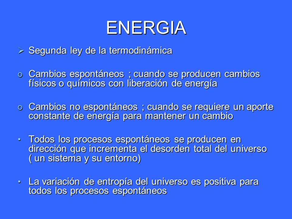 ENERGIA Segunda ley de la termodinámica