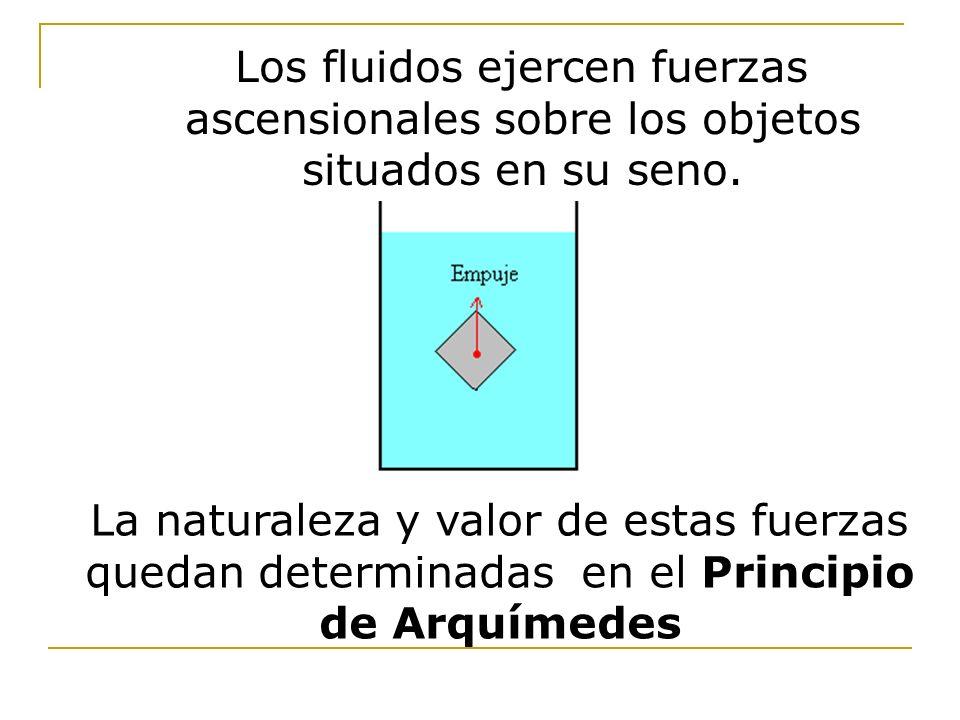 Los fluidos ejercen fuerzas ascensionales sobre los objetos situados en su seno.