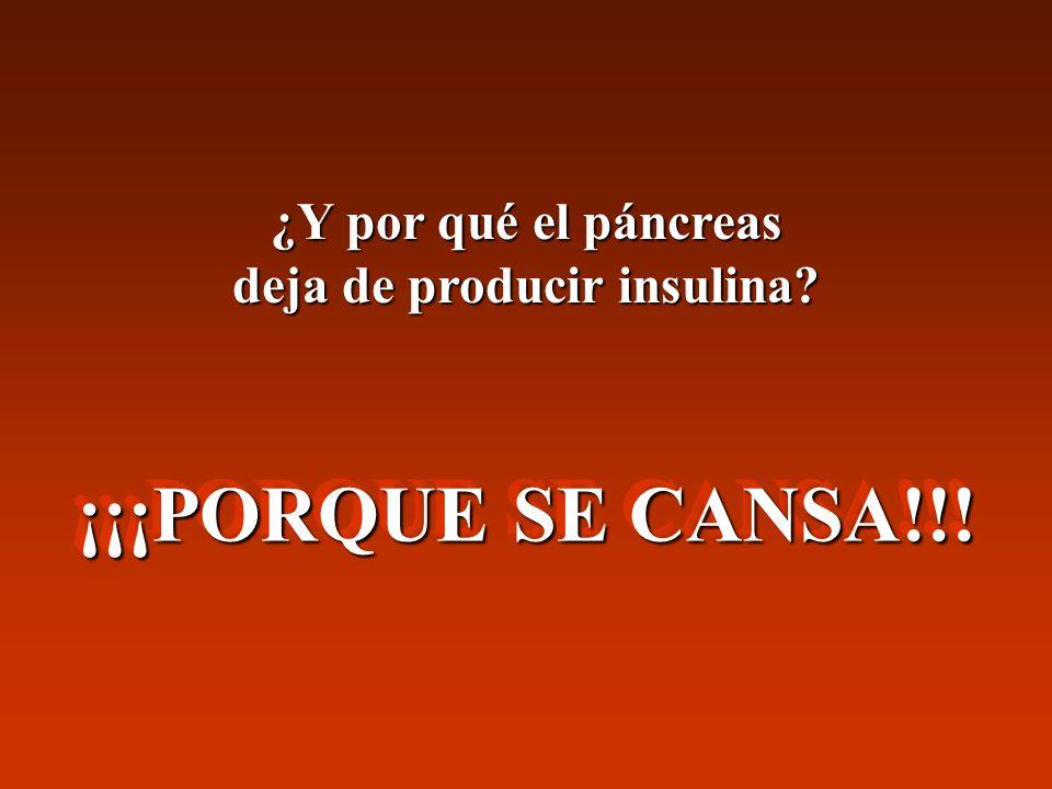¿Y por qué el páncreas deja de producir insulina