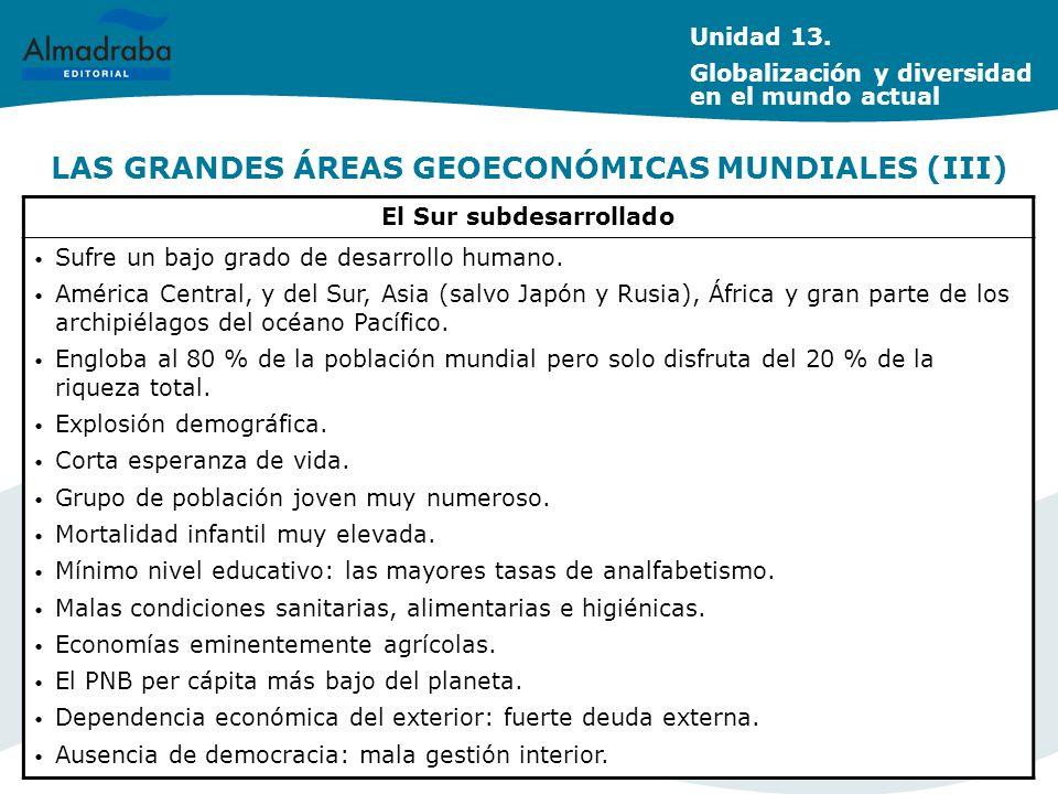 LAS GRANDES ÁREAS GEOECONÓMICAS MUNDIALES (III)