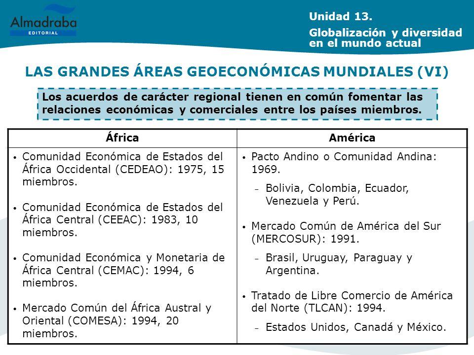 LAS GRANDES ÁREAS GEOECONÓMICAS MUNDIALES (VI)