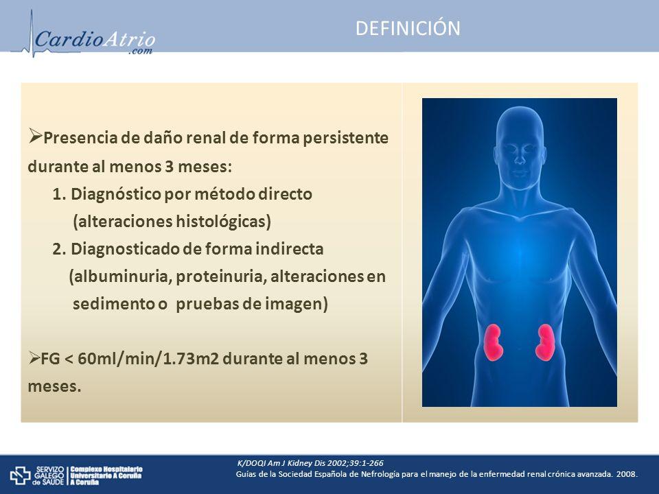 Presencia de daño renal de forma persistente durante al menos 3 meses: