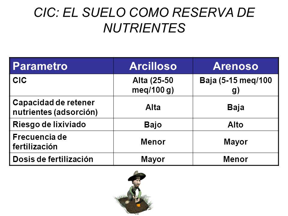 CIC: EL SUELO COMO RESERVA DE NUTRIENTES