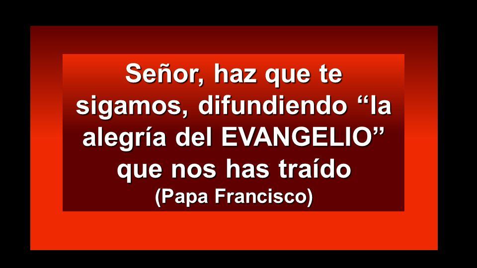 Señor, haz que te sigamos, difundiendo la alegría del EVANGELIO que nos has traído