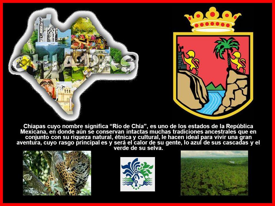 Chiapas cuyo nombre significa Río de Chía , es uno de los estados de la República Mexicana, en donde aún se conservan intactas muchas tradiciones ancestrales que en conjunto con su riqueza natural, étnica y cultural, le hacen ideal para vivir una gran aventura, cuyo rasgo principal es y será el calor de su gente, lo azul de sus cascadas y el verde de su selva.