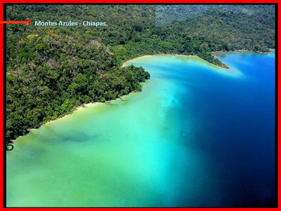 E Montes Azules - Chiapas.