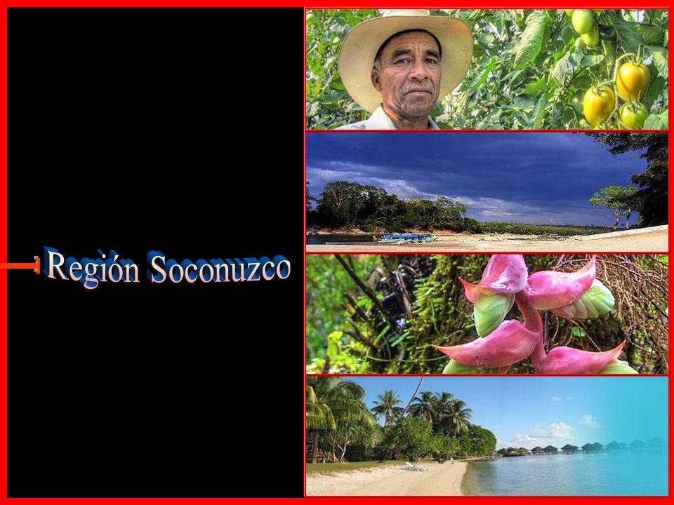 Región Soconuzco E