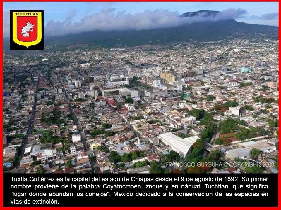 Tuxtla Gutiérrez es la capital del estado de Chiapas desde el 9 de agosto de 1892.