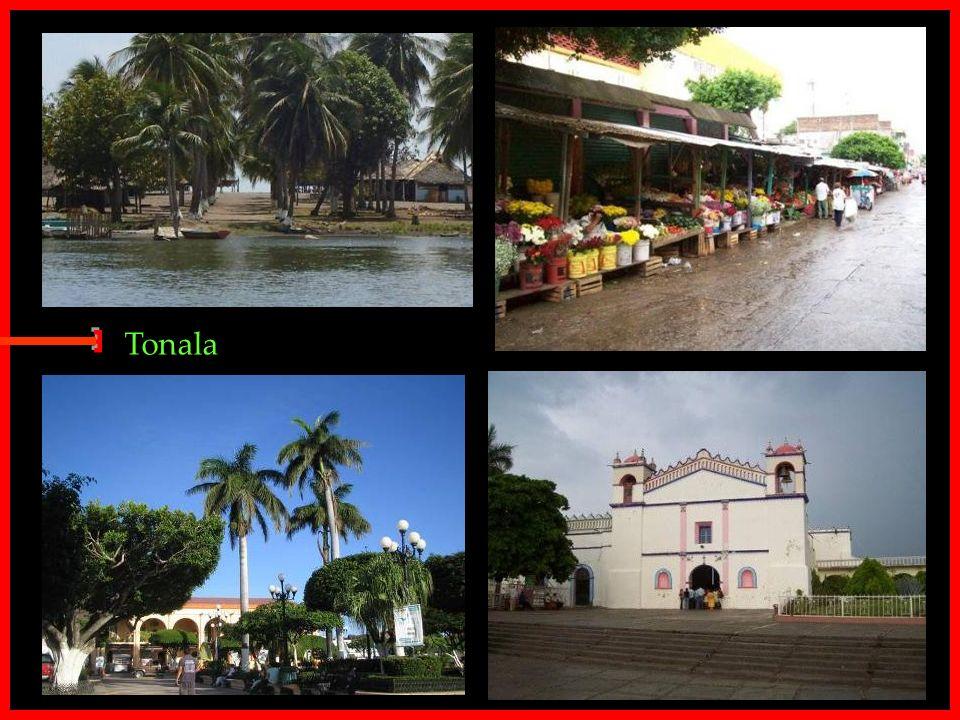 Tonala E