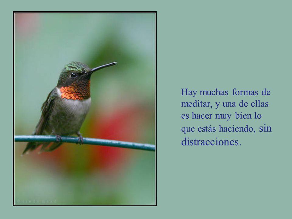 Hay muchas formas de meditar, y una de ellas es hacer muy bien lo que estás haciendo, sin distracciones.