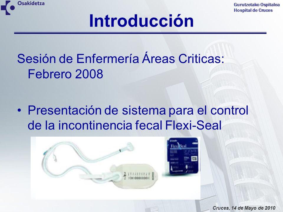 Introducción Sesión de Enfermería Áreas Criticas: Febrero 2008