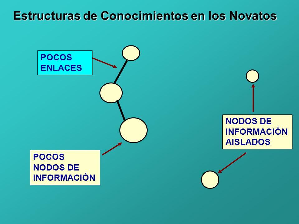 Estructuras de Conocimientos en los Novatos