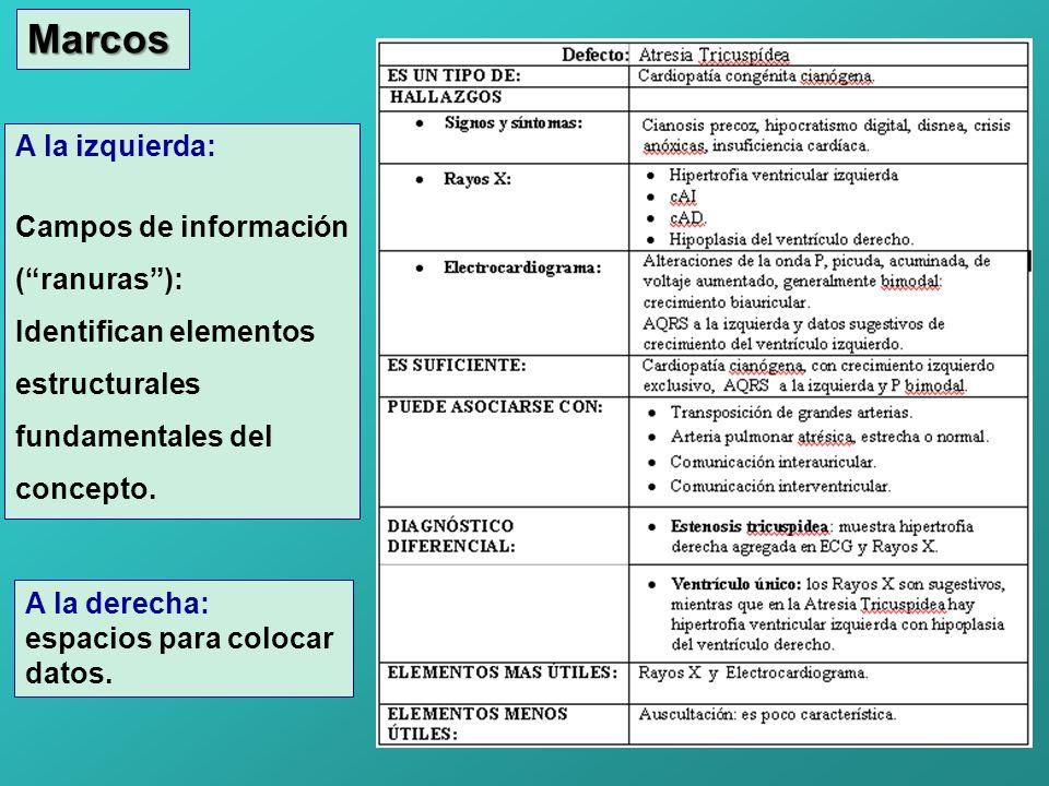 Marcos A la izquierda: Campos de información ( ranuras ):