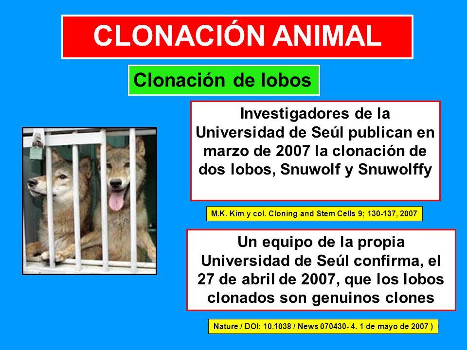 CLONACIÓN ANIMAL Clonación de lobos