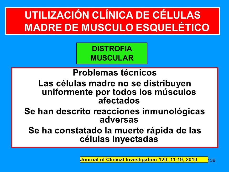 UTILIZACIÓN CLÍNICA DE CÉLULAS MADRE DE MUSCULO ESQUELÉTICO