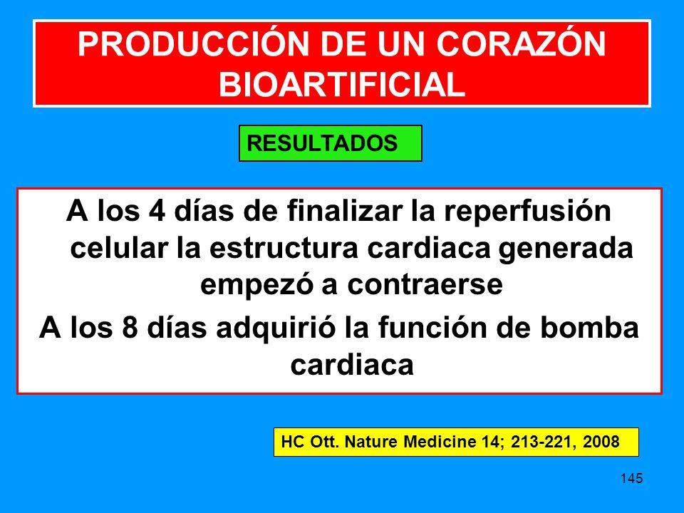 PRODUCCIÓN DE UN CORAZÓN BIOARTIFICIAL