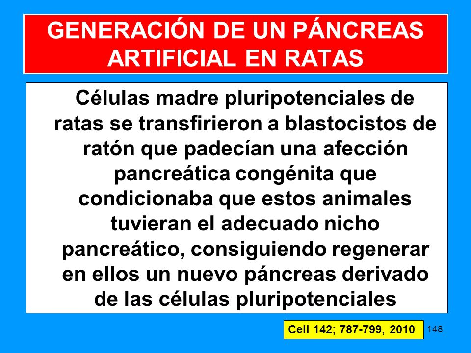 GENERACIÓN DE UN PÁNCREAS ARTIFICIAL EN RATAS