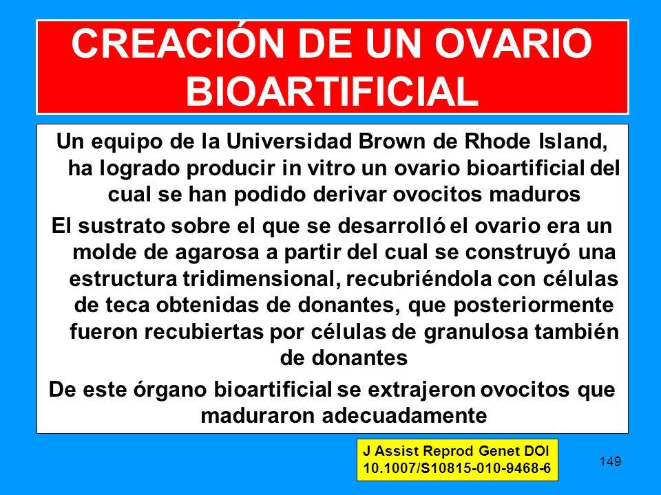 CREACIÓN DE UN OVARIO BIOARTIFICIAL