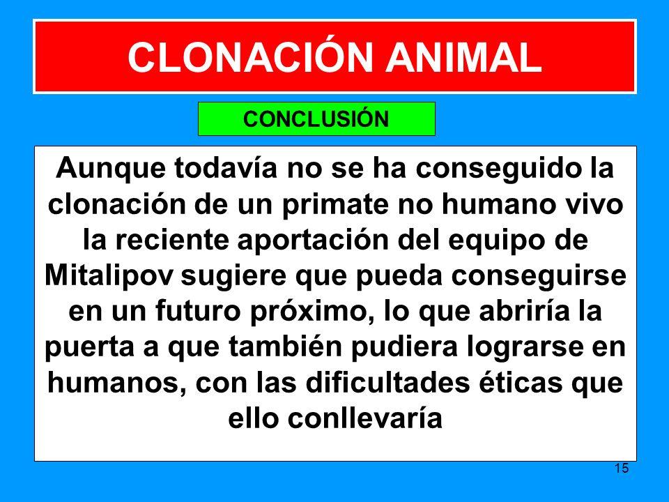 CLONACIÓN ANIMAL CONCLUSIÓN.