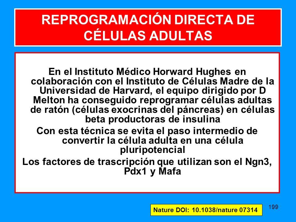 REPROGRAMACIÓN DIRECTA DE CÉLULAS ADULTAS