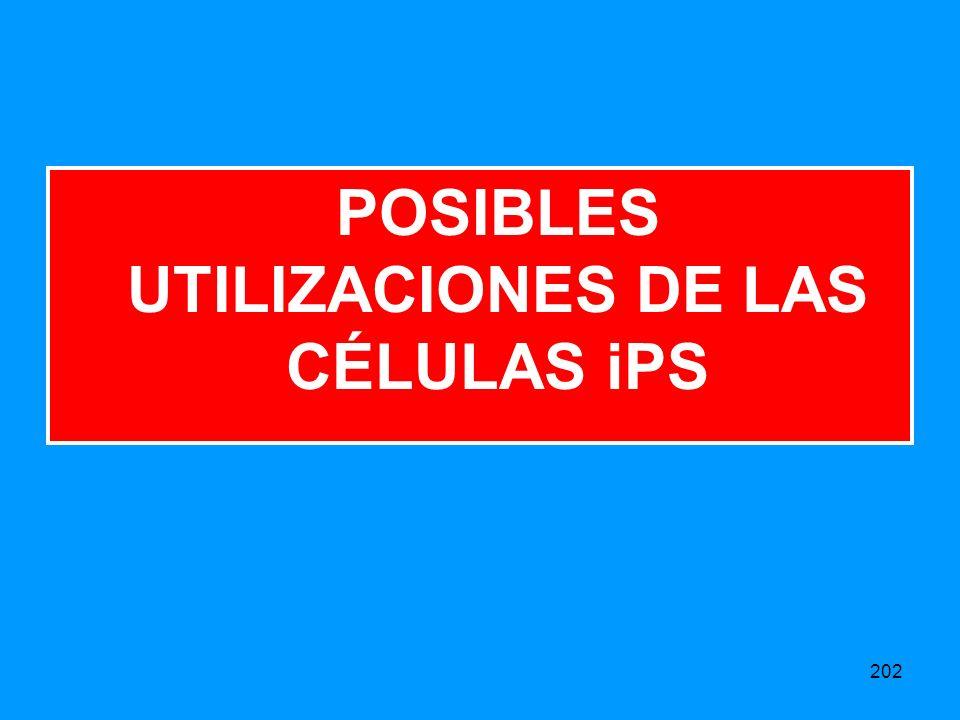 POSIBLES UTILIZACIONES DE LAS CÉLULAS iPS