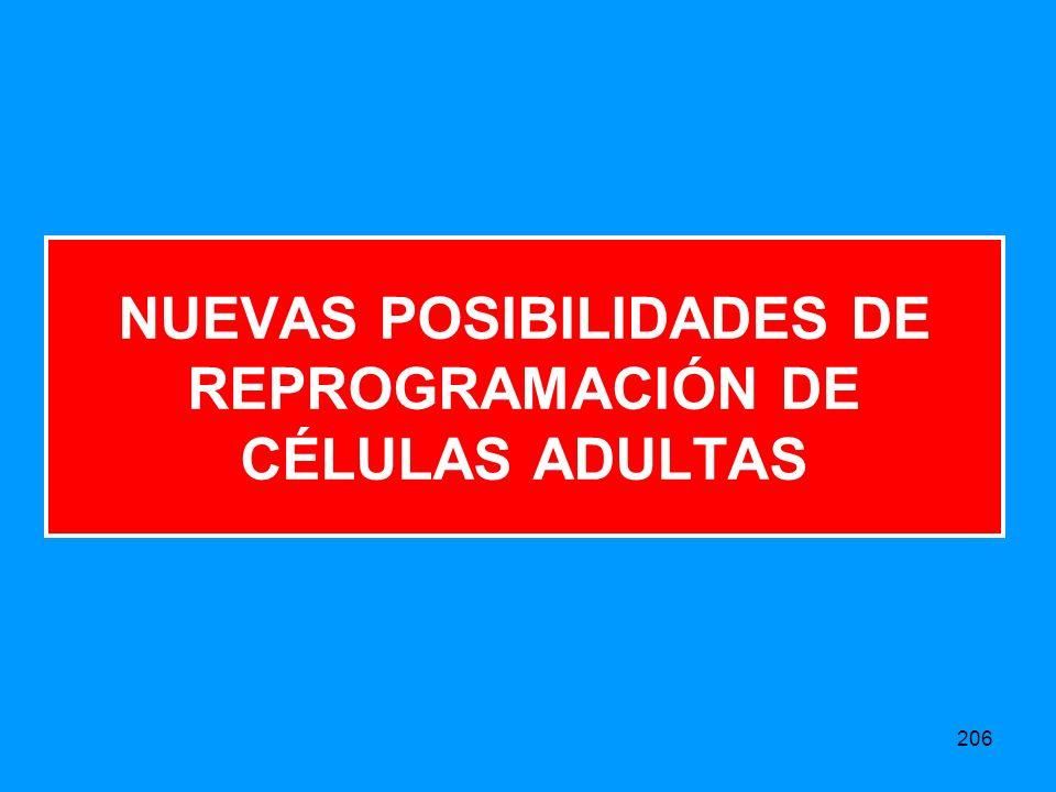 NUEVAS POSIBILIDADES DE REPROGRAMACIÓN DE CÉLULAS ADULTAS
