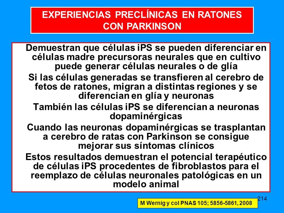 EXPERIENCIAS PRECLÍNICAS EN RATONES CON PARKINSON