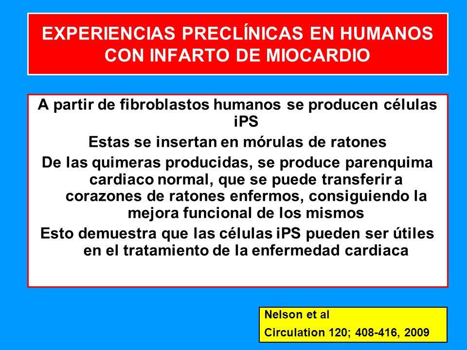 EXPERIENCIAS PRECLÍNICAS EN HUMANOS CON INFARTO DE MIOCARDIO