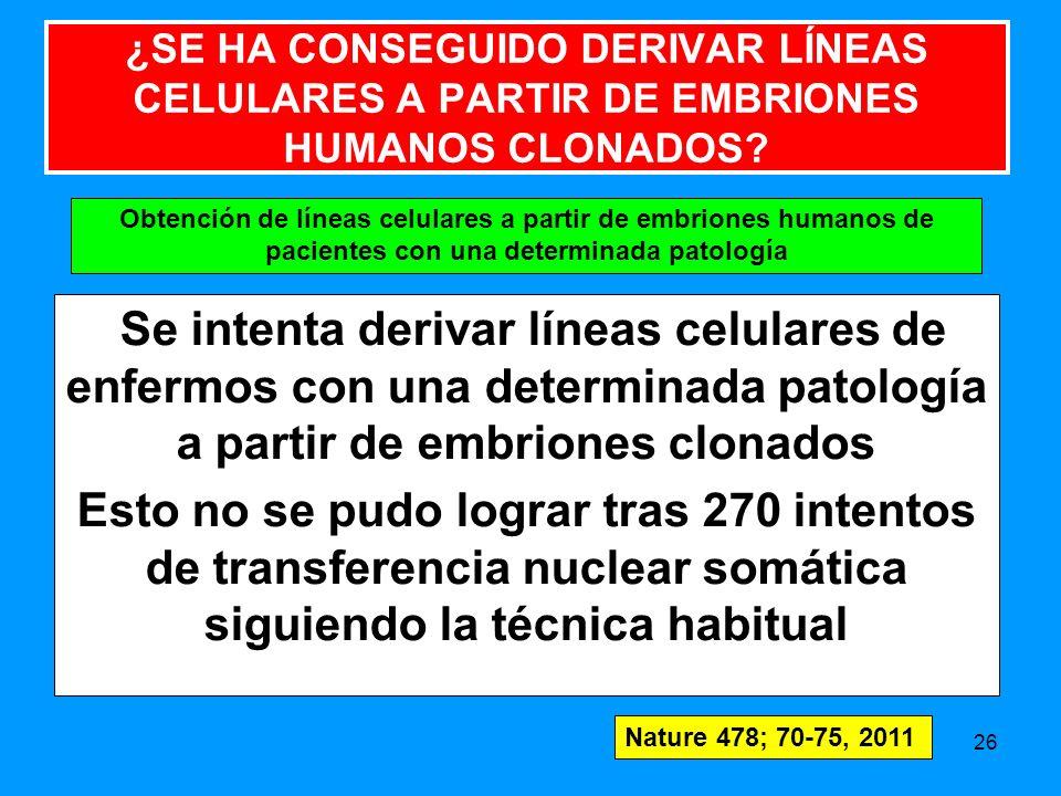 ¿SE HA CONSEGUIDO DERIVAR LÍNEAS CELULARES A PARTIR DE EMBRIONES HUMANOS CLONADOS
