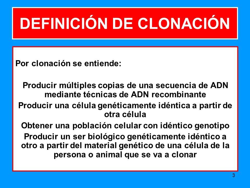 DEFINICIÓN DE CLONACIÓN