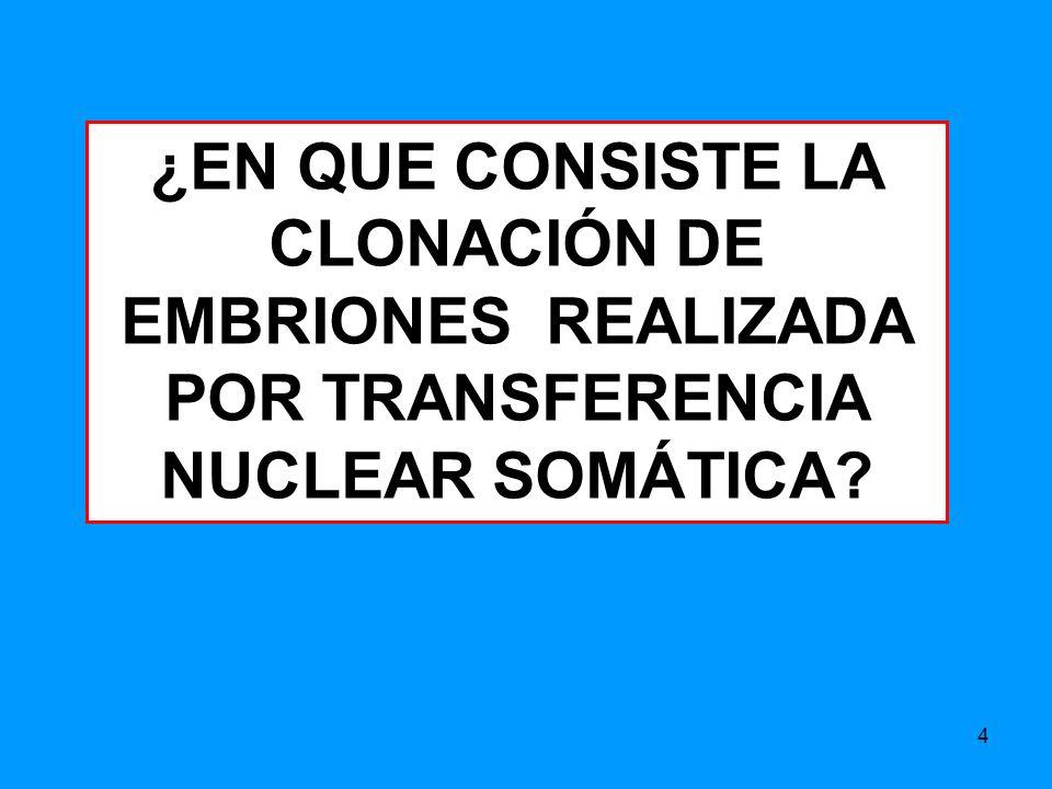 ¿EN QUE CONSISTE LA CLONACIÓN DE EMBRIONES REALIZADA POR TRANSFERENCIA NUCLEAR SOMÁTICA