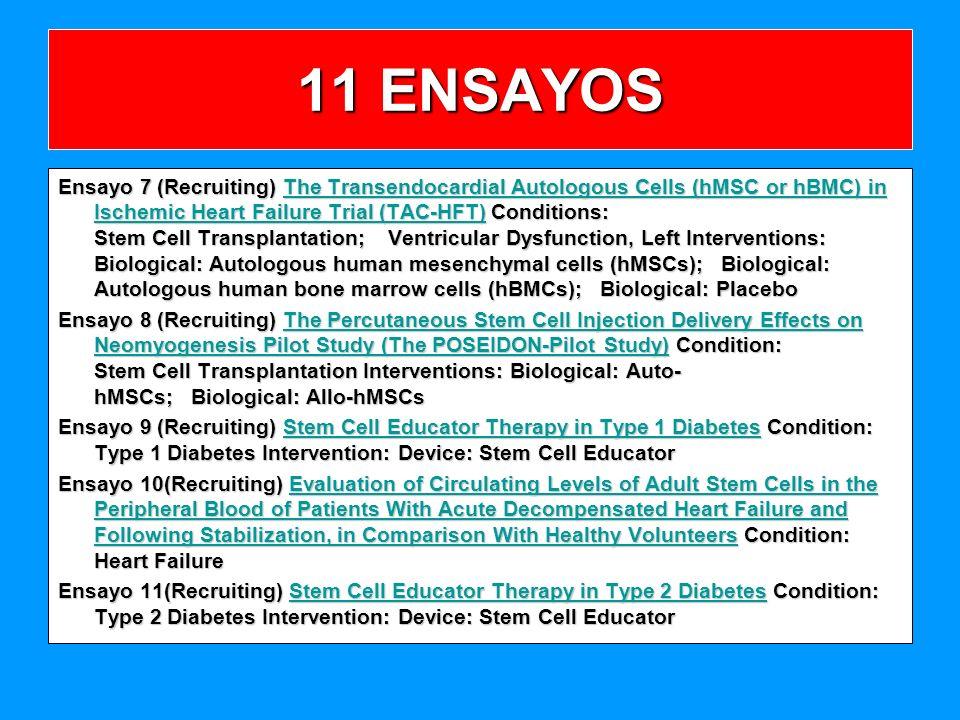 11 ENSAYOS
