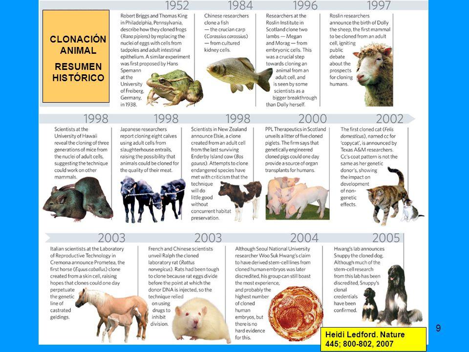 CLONACIÓN ANIMAL RESUMEN HISTÓRICO