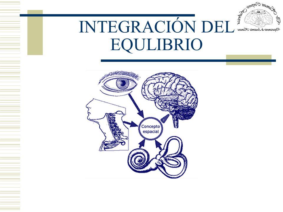 INTEGRACIÓN DEL EQULIBRIO
