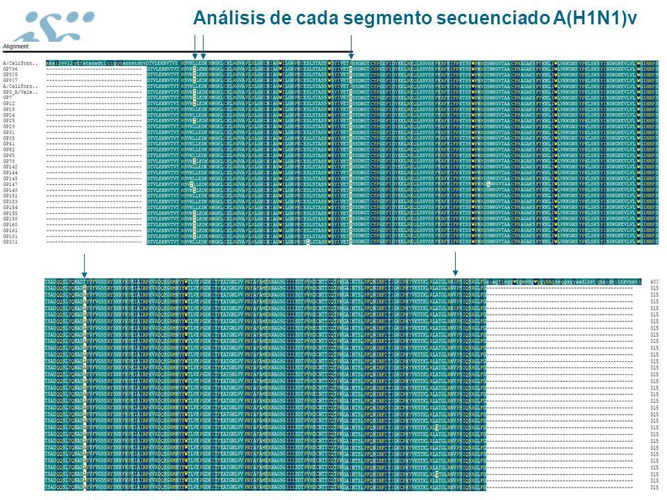 Análisis de cada segmento secuenciado A(H1N1)v
