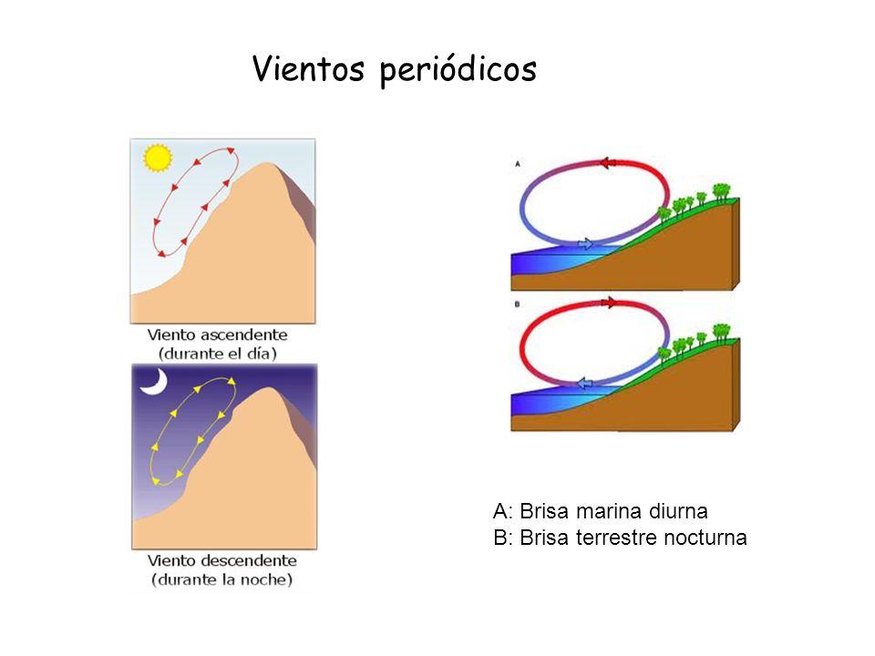 Vientos periódicos A: Brisa marina diurna B: Brisa terrestre nocturna