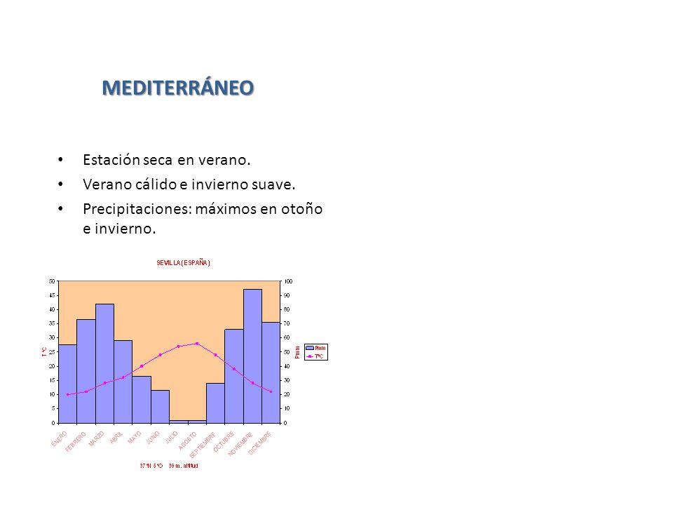 MEDITERRÁNEO Estación seca en verano. Verano cálido e invierno suave.