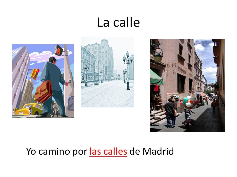 La calle Yo camino por las calles de Madrid