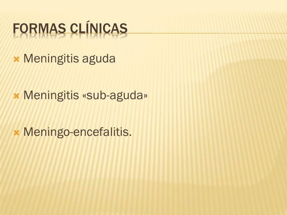 Formas clínicas Meningitis aguda Meningitis «sub-aguda»