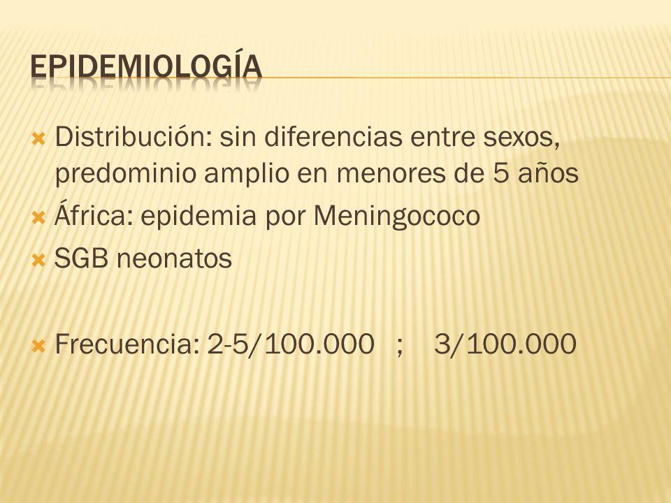 epidemiología Distribución: sin diferencias entre sexos, predominio amplio en menores de 5 años. África: epidemia por Meningococo.