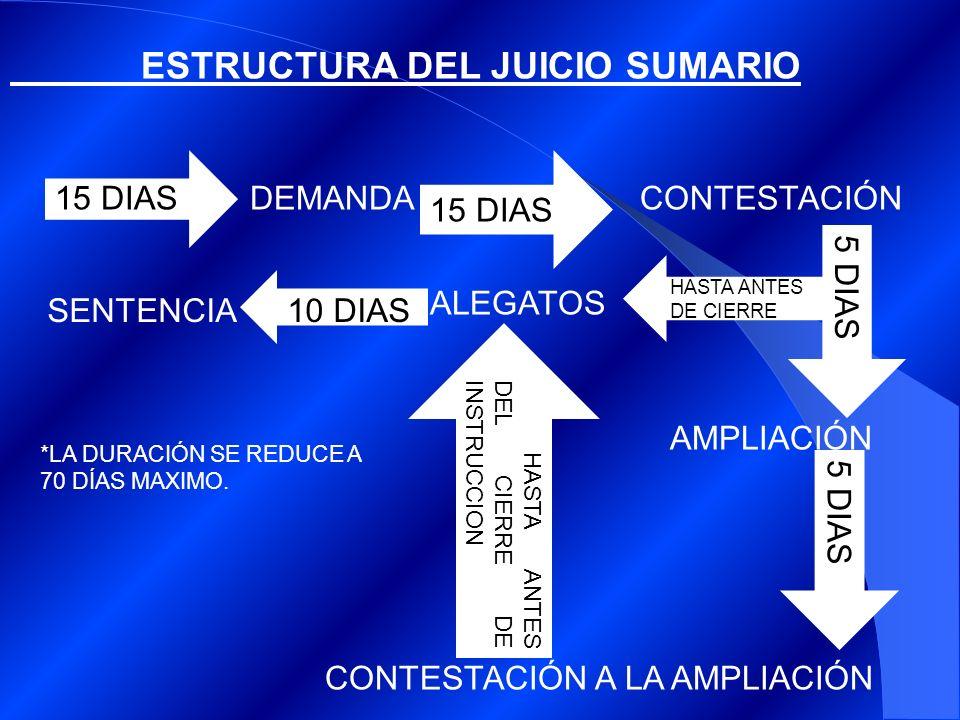 ESTRUCTURA DEL JUICIO SUMARIO