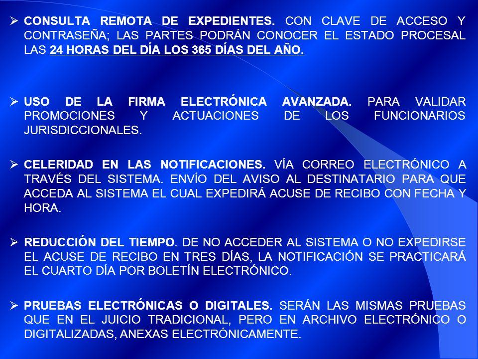 CONSULTA REMOTA DE EXPEDIENTES