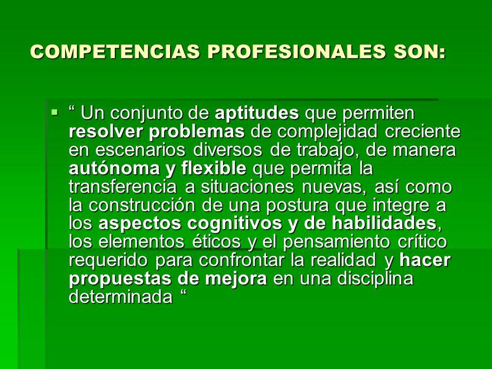 COMPETENCIAS PROFESIONALES SON: