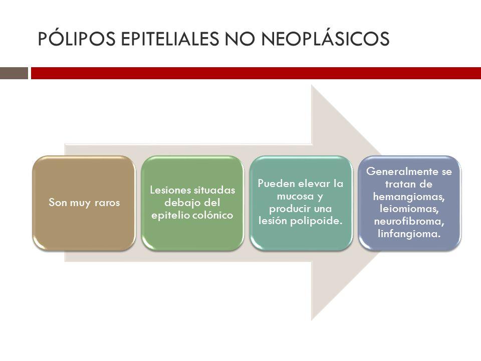 PÓLIPOS EPITELIALES NO NEOPLÁSICOS