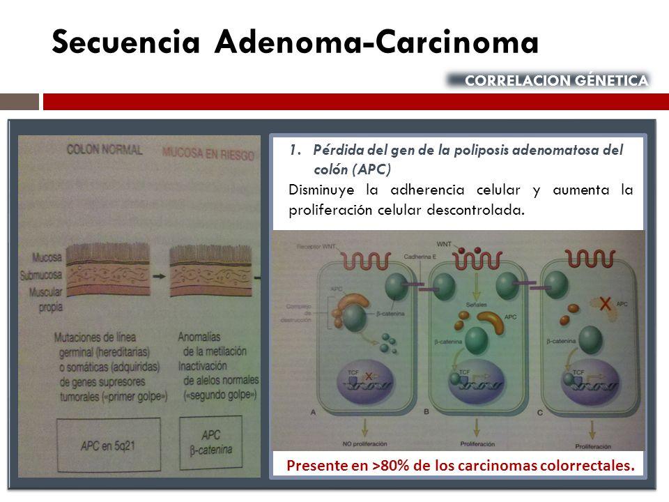 Presente en ˃80% de los carcinomas colorrectales.